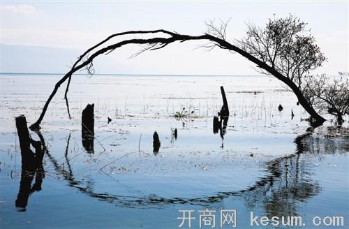 洱海环保整顿 千家客栈何去何从?(图)图片